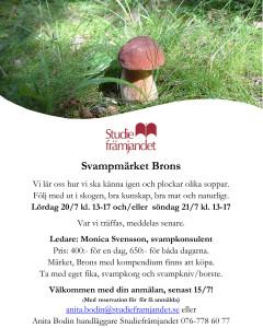Microsoft Word - svamp3 svampmärket Brons.docx