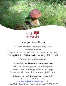 Microsoft Word - svamp3 svampmärket Silver.docx