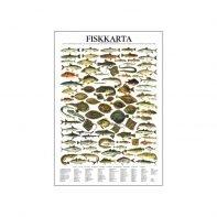 Fiskkarta