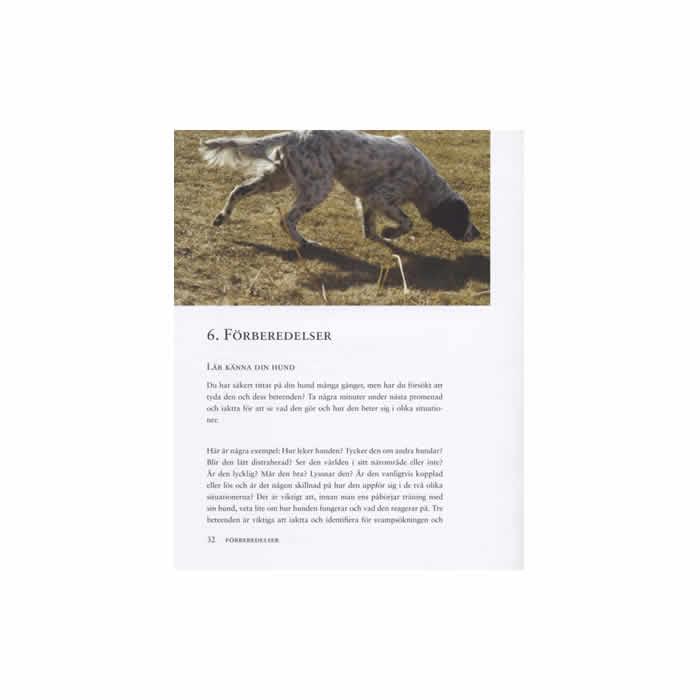 Plocka svamp med hund, sid 32
