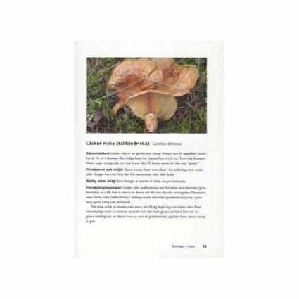 Svampboken - 161 svampar i skog och mark, sid 83