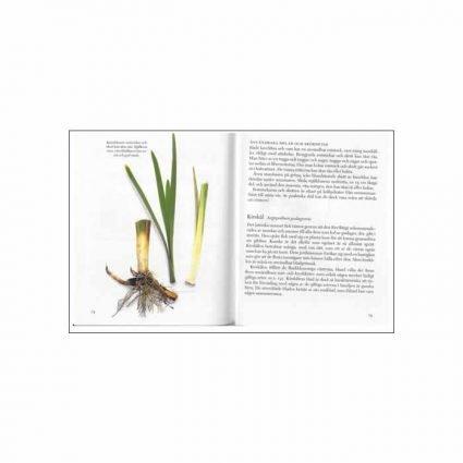 Vanliga vilda växter, uppslag