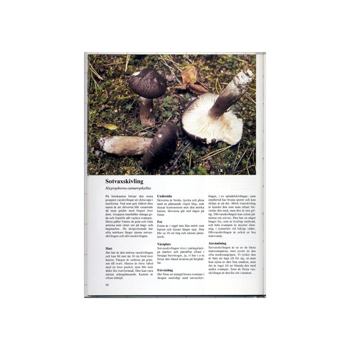 Första svampboken, inlaga