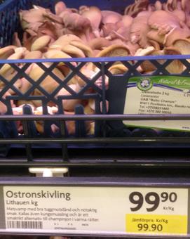 Ostronskivling