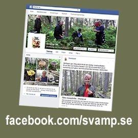 Gå till vår Facebook-sida