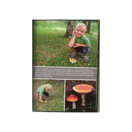 På svamputflykt med Thomas, sid 15