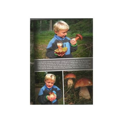 På svamputflykt med Thomas, sid 5