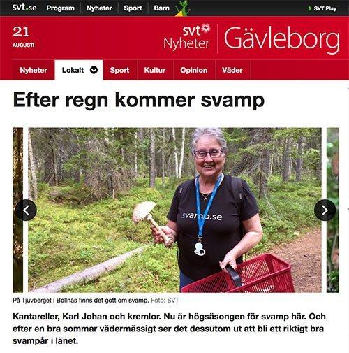 Med SVT i svampskogen Bollnäs Hälsingland Monica Svensson svampkonsulent