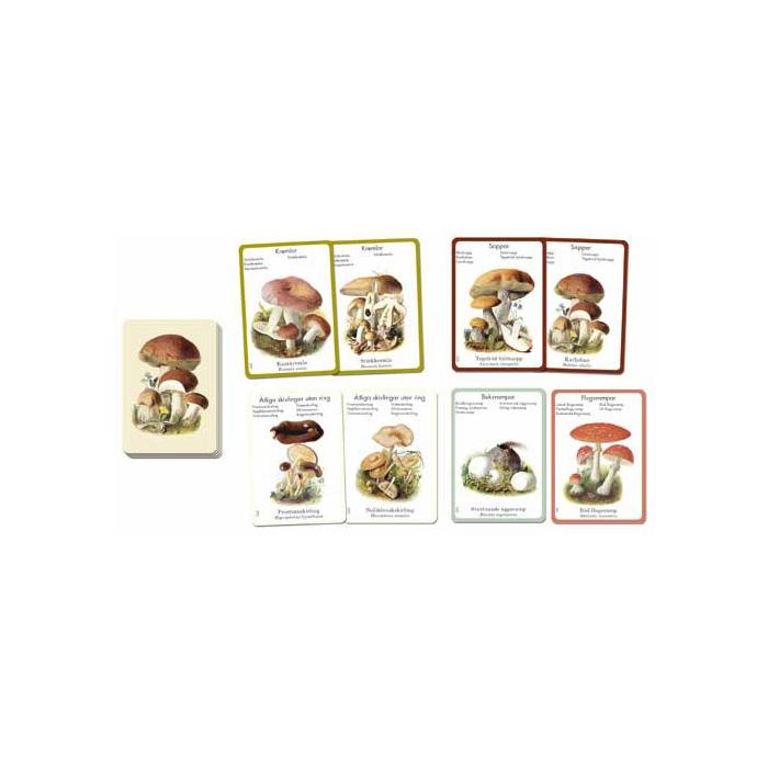 Exempel på spelkort i Svampspelet