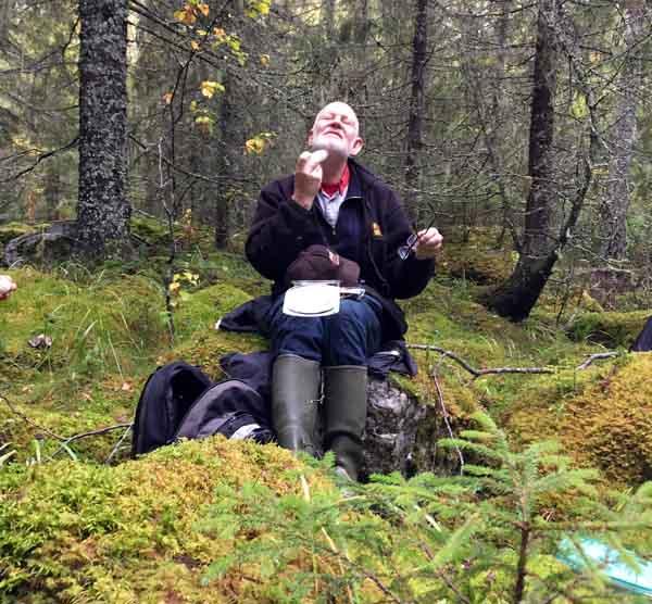 Alf Pallin och myggmedel
