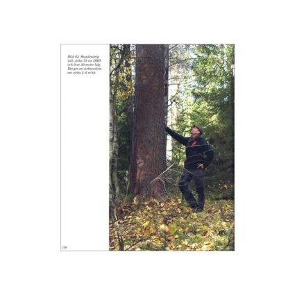 Konsten att hugga träd och ha skogen kvar, sid 106