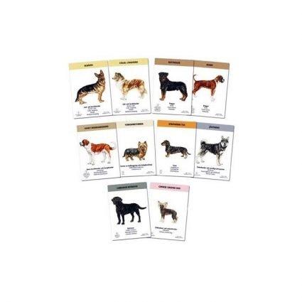 Hundspelet, exempel på spelkort