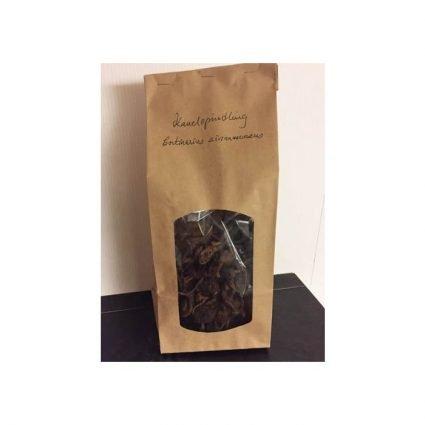 Kanelspindling, Cortinarius cinnamomeus