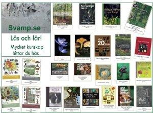 Annons böcker december 2019